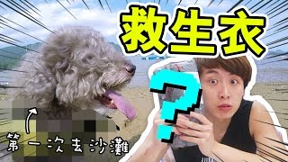 淘寶開箱:狗狗「學游泳必用?」MUFFIN第一次去海灘!
