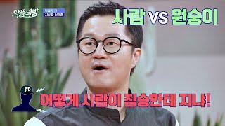 원숭이 학교에 불려간 지상렬(Ji Sang-ryeol)이 통편집 당한 이유 악플의 밤(replynight) 13회