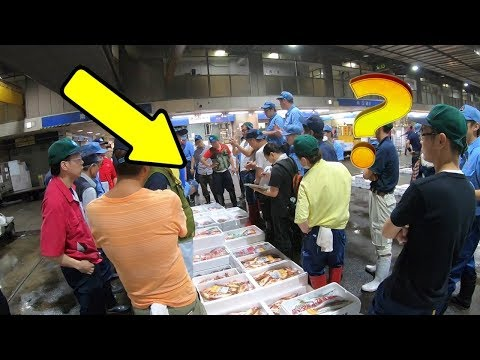 Osaka Central Fish Market - Fish Auction Part 1
