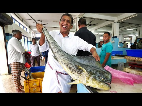 Indian Seafood Breakfast - Kannur FISH MARKET Experience! | Kerala, India