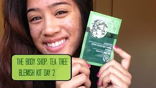 The Body Shop: Tea Tree Blemish Kit Day 2