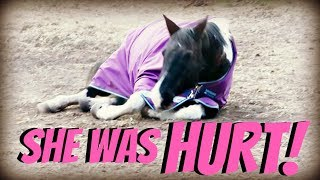 SHE WAS HURT! Day 290 (10/19/18)