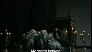 """Don Giovanni Act I_b """"Ma qual mai s"""