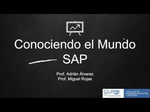 Sistemas UNI - Taller de Especialización en SAP - Sesión 1 - 06.04.2017