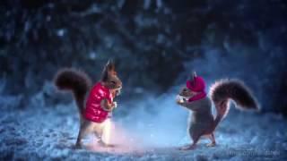 [HD] Рекламные заставки (Первый канал, зима 2016-17)