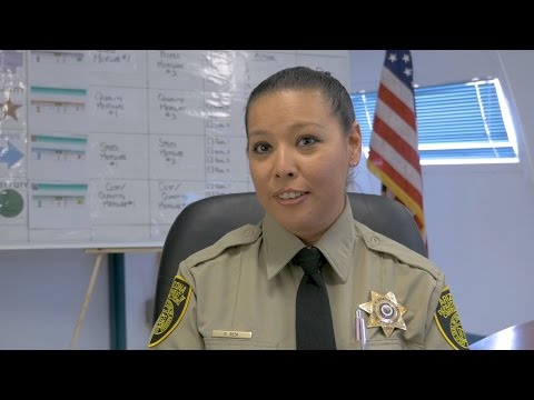 Arizona Management System: A Correctional Officer's Experience