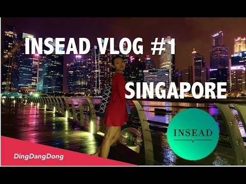 INSEAD VLOG #1: Period 0 - Business Foundation Program | Travel in Singapore, Asian Food, Marina Bay