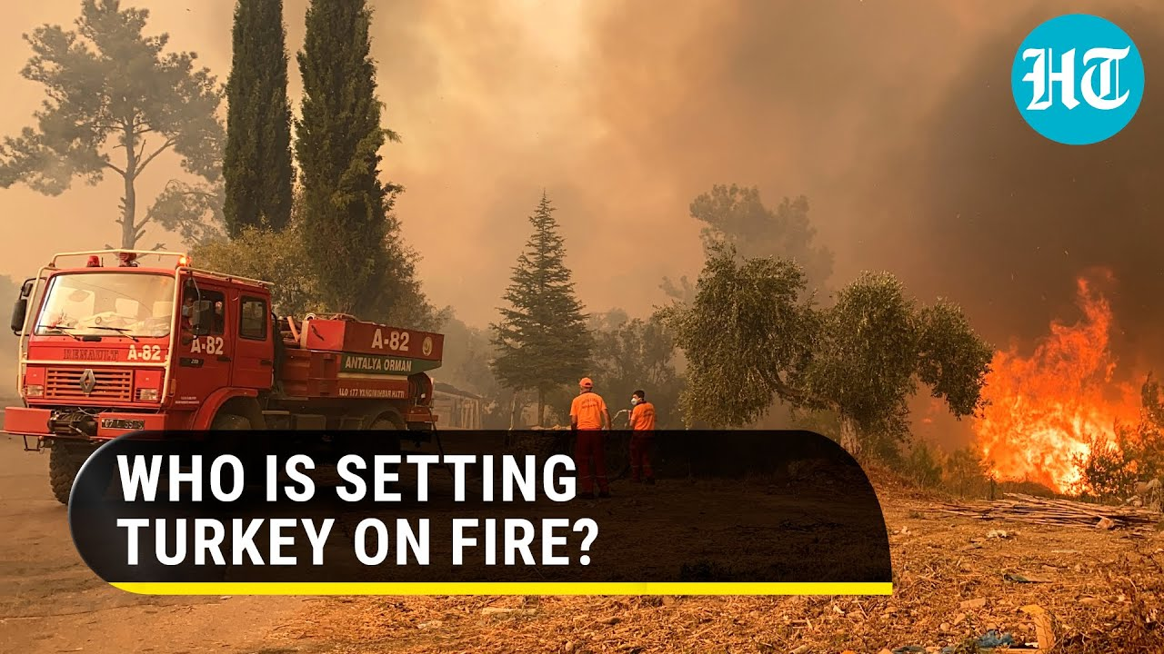 Download 'Will not ignore': says Erdogan as massive forest fires rage across southern Turkey