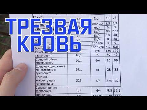 Трезвый анализ крови (без никотиновый и без мясной)))