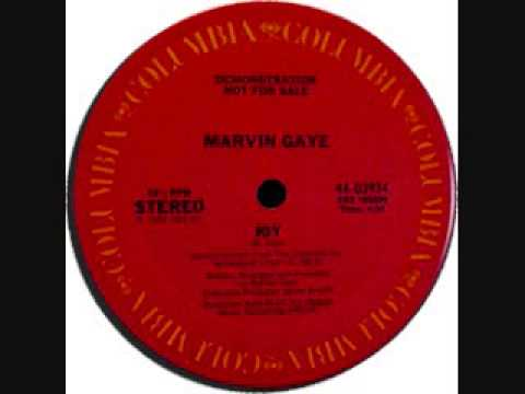 Joy (12 Inch Version) - Marvin Gaye