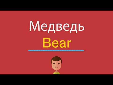 Как произносится по английски слово медведь