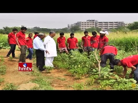 Eklavya Foundation Natural Agricultural Revolution in Crop Farming with Youth | Nela Talli | HMTV