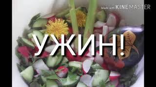 Весенний салат(РЕДИС,ОГУРЕЦ, СПАРЖА...),Туш.картофель с крапивой!Рыба сазан,судак...