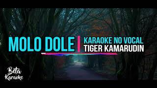 Karaoke No Vocal •||• Molo Dole_Lagu daerah Ende Lio
