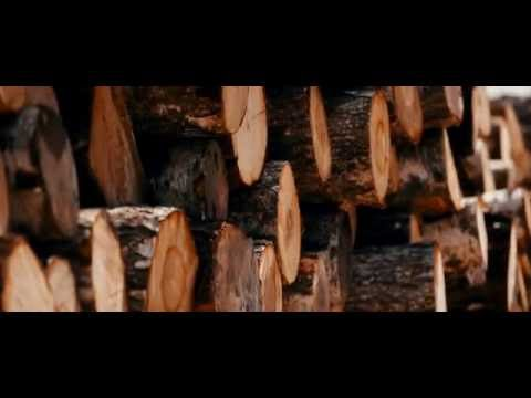 Фабрика Брянский лес, производство