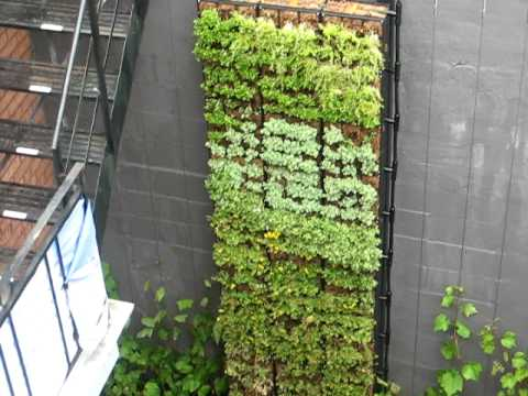 Vertical Garden /  Eco-Vertical Mur Végétal