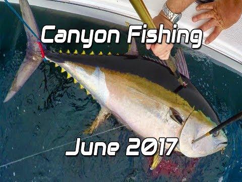 Canyon Fishing June 2017