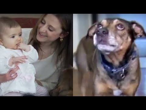 When The Dog Woke Them In A Panic, They Soon Realized Something Was Terribly Wrong With Their Baby
