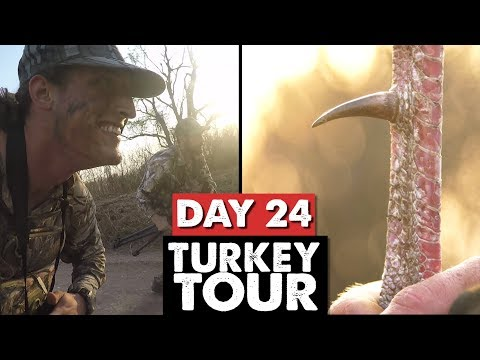 STALKING HOGS, KS LONG SPUR! - Turkey Tour Day 24