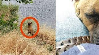 На рыбалке парочка увидела в кустах зверя. Такого улова они точно не ожидали...