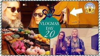 Wild Polar Bear In Oslo ✧ Vlogmas day 20 Thumbnail