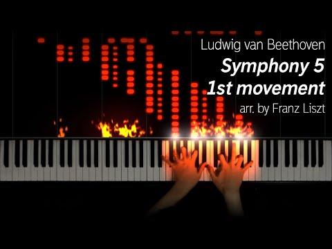 Beethoven/Liszt - Symphony 5 1st Movement (25k Subs Special)