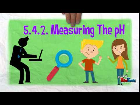 pH Scale and Measurement - YouTube