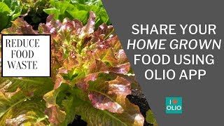 Food Sharing App for Home Grown Fruits and Vegetables (Reduce Food Waste)