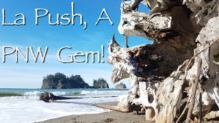 La Push Was An Unexpected Gem! Onboard Lifestyle ep.88