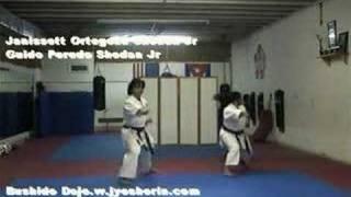 TAIKYOKU SHODAN Jyoshinmon Shorin Ryu Karate Do
