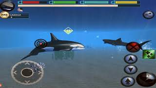 🐯🦈Ultimate Tiger Shark Family Simulator, Ultimate Shark Simulator, By Gluten Free game