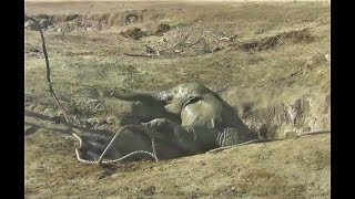 After This Elephant Baby Fell Into A Well, Rescuers challenged The Wrath Of Mom To Free the Baby