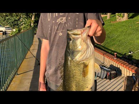 Westlake Bass Fishing (5.5lber)