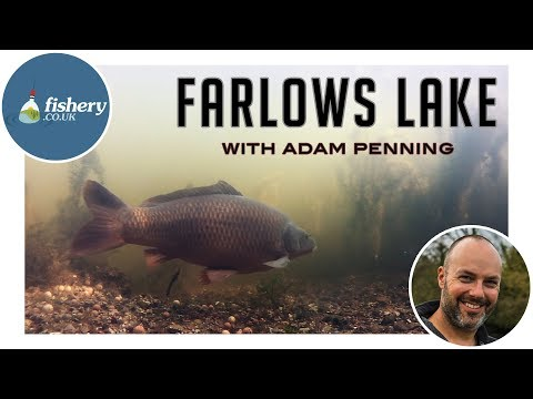 Fishery - Farlows Lake With Adam Penning