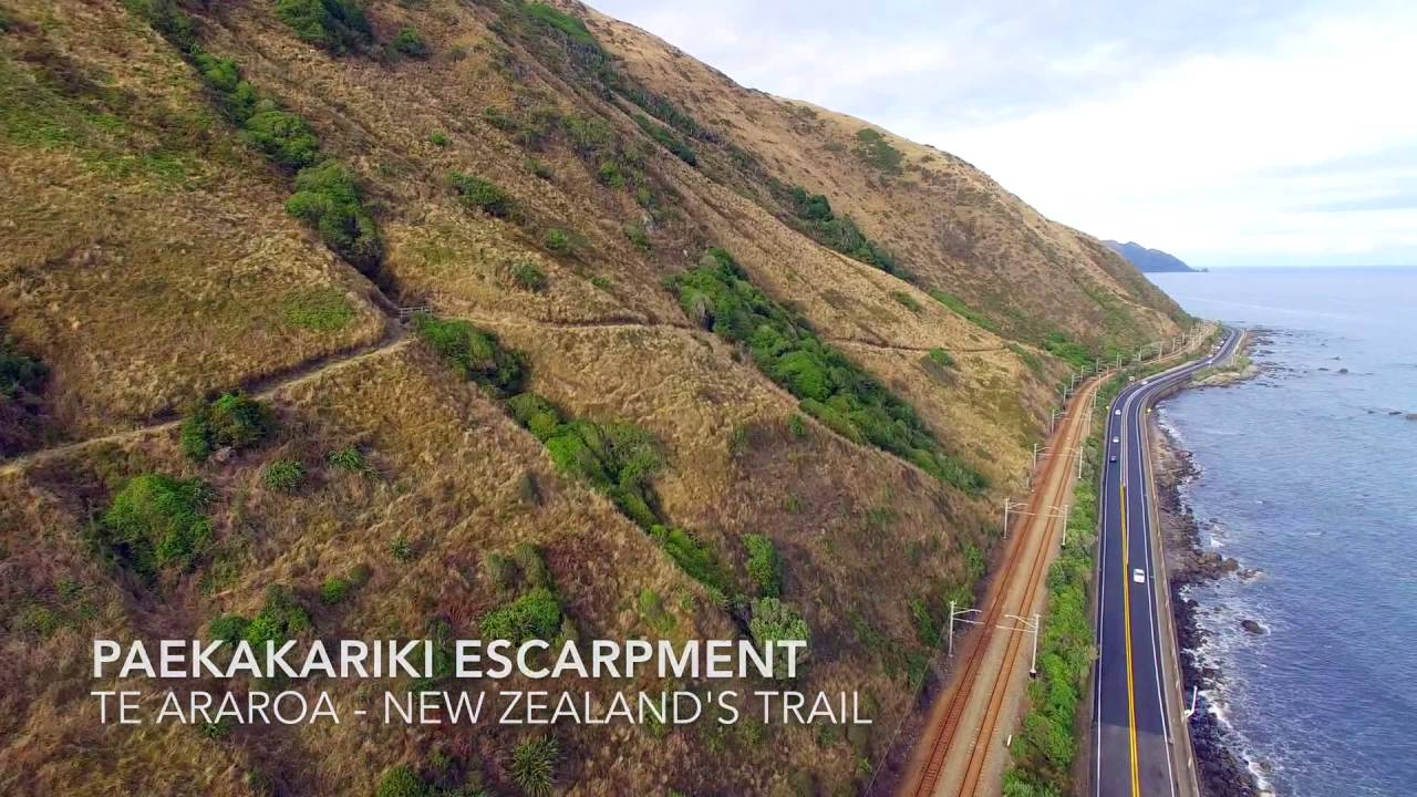 paekakariki escarpment track youtube