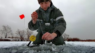 ДОБРАЛИСЬ ДО ДИКИХ МЕСТ. Ловля на жерлицы щуки и судака. Зимняя рыбалка 2020 - 2021.