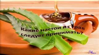 Травы для лечения аденомы предстательной железы