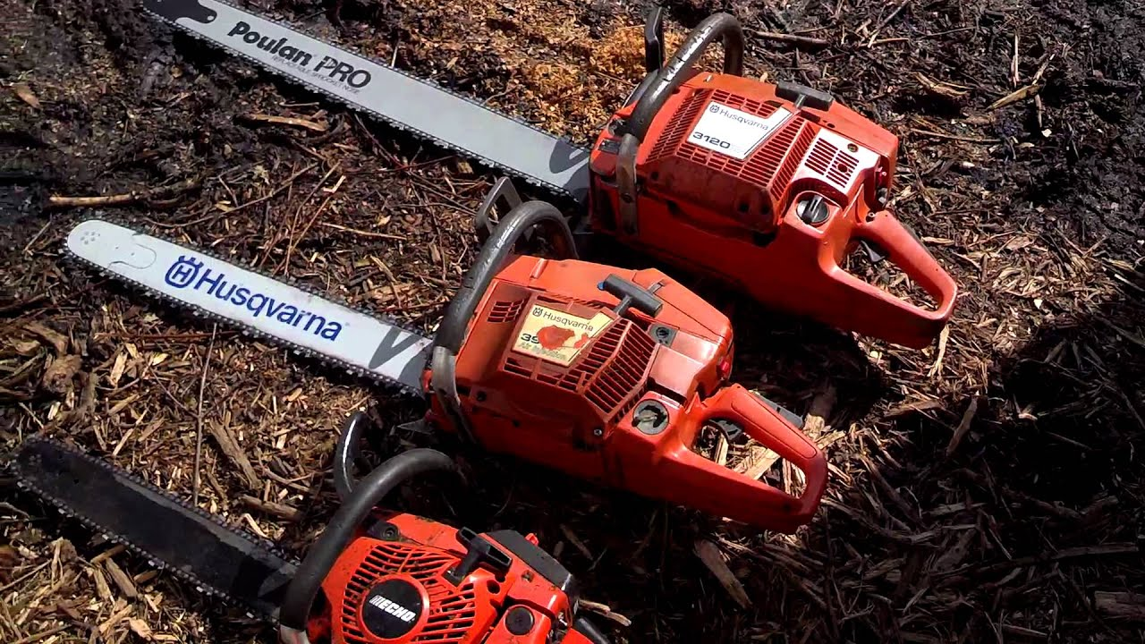Climbing Arborist or Tree Climbers Use Stihl, Husqvarna, and Echo Chainsaws  for Tree Work