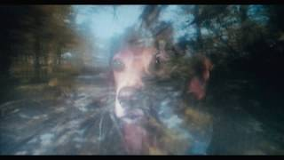 Agnes Obel - Cameras Rolling (Official Video) YouTube Videos