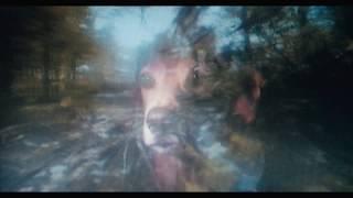 Clip Camera's Rolling - Agnes Obel