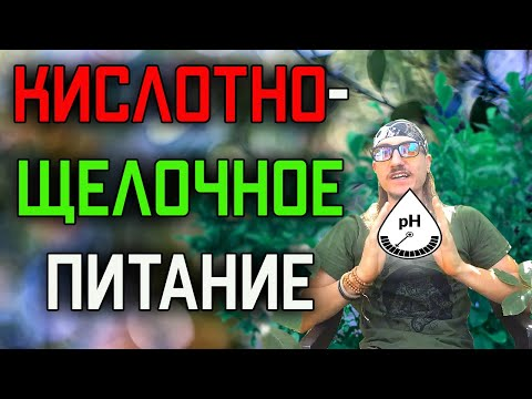 Кислотно-щелочное питание и лечение Рака, Полипов, Остеопороза и Артроза.