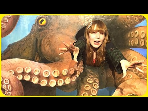 THE DAY I GOT EATEN BY AN OCTOPUS| optical illusions|Yokohama Art Trick Museum
