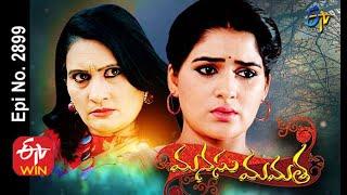 Manasu Mamata | 31st July 2020 | Full Episode No 2899 | ETV Telugu