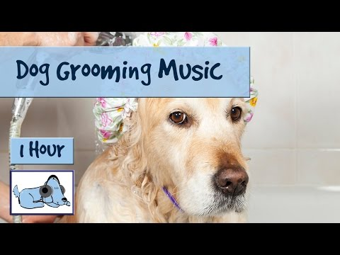 Dog Grooming Music, Music to Help Relax and Calm Your Dog During Bathing and Grooming, Clip Claws