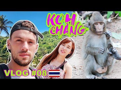 LES PLAGES, SINGES, ET ÉLÉPHANTS DE KOH CHANG | Vlog Thailande #08