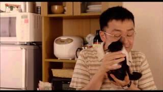 大の猫好きで知られる『かもめ食堂』や『トイレット』の荻上直子が監督...