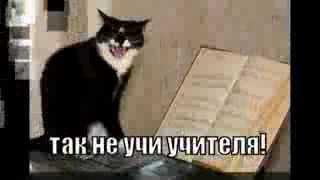 День учителя музыки))