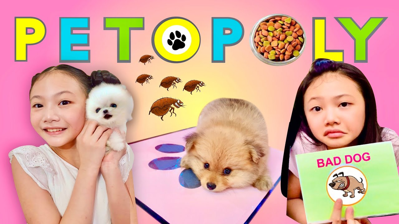 How to Play PETOPOLY | Bug's puppy game