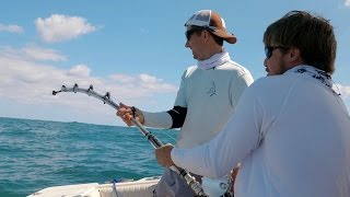 Video Shark Fishing with HECZWE from OpTic Gaming and LunkersTV - 4K download MP3, 3GP, MP4, WEBM, AVI, FLV Juli 2017