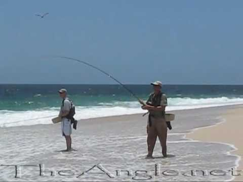 Punta Arena Jacks - Baja Beach Fly Fishing
